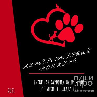 Конкурс к Международному дню защиты бездомных животных